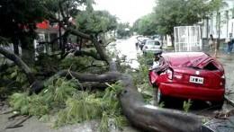 Comenzaron las tareas de limpieza en Resistencia tras la cola de tornado que voló techos y árboles