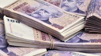 """Peste verde: «Vamos a un mercado en moneda nacional más sólido"""", aseguran desde Economía"""
