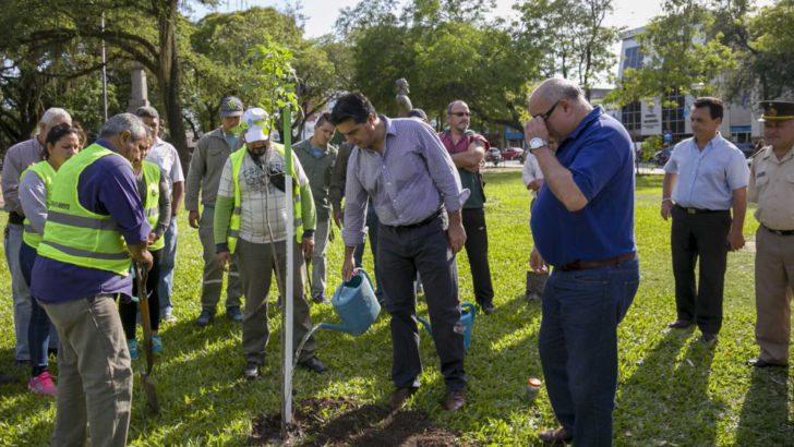 Capitanich plantó el árbol 10 mil y avanza con su meta ambiental