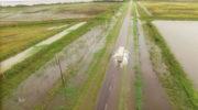 Más de 200 milímetros, el promedio de agua caída en el sudoeste