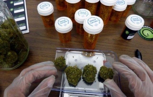 El Senado dio media sanción al marco regulatorio de producción de cannabis