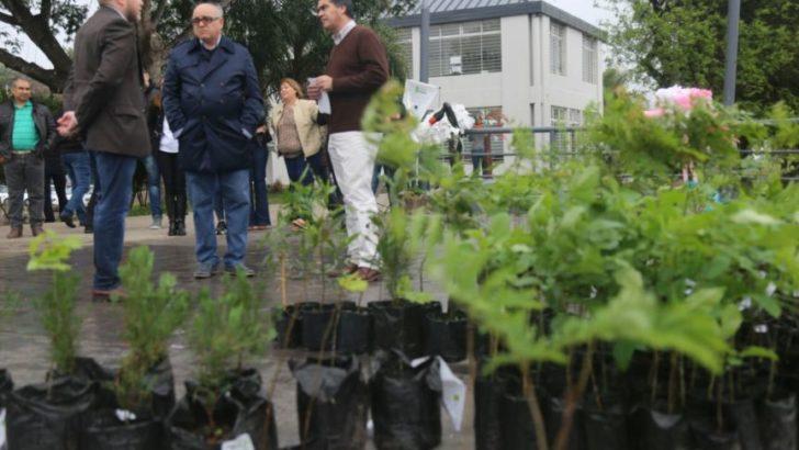 Entregaron mil árboles a colegios y escuelas del centro de la ciudad