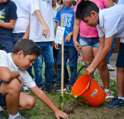 Espacios Verdes Cuidados: jornada de plantación de árboles en la EEP Nº 698 1