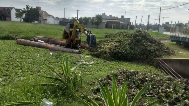 Medio ambiente: intervienen en las lagunas Colussi y Francia