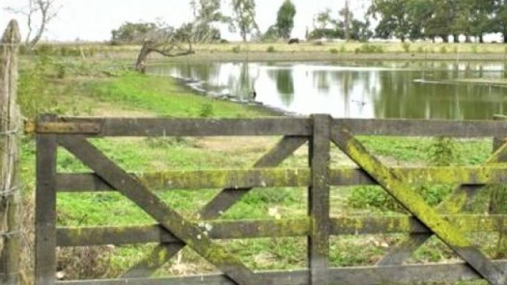 Avanzan en medidas económicas para beneficiar a productores afectados por la emergencia hídrica