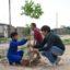 Presidencia del Concejo: plantaron árboles en un potrero del barrio Néstor Kirchner