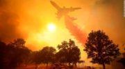 Llegan a 29 los muertos por el incendio forestal en California