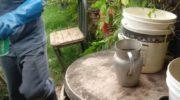 Continúan con las acciones intensivas de lucha contra el dengue, zika y chikungunya