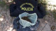 Narcomenudeo: allanaron viviendas y secuestraron estupefacientes