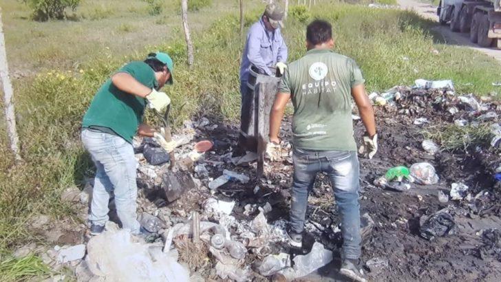 Concejo: Equipo Hábitat continua con trabajos de erradicación de minibasurales y descacharrado