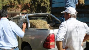 Emergencia hídrica: productores agradecen al Gobierno provincial por la asistencia recibida