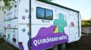 Mascotas: el Quirófano Móvil sigue recorriendo los barrios de la ciudad