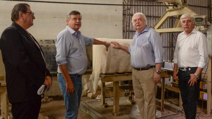 Algodón: Peppo acompañó el inicio del desmonte anual de Algodonera Pinedo
