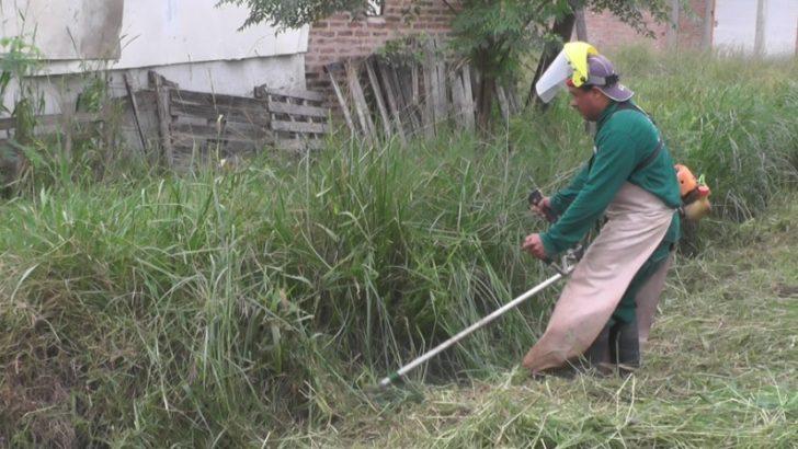 Carpincho Macho: el Equipo Hábitat realizó desmalezamiento y limpieza de desagües