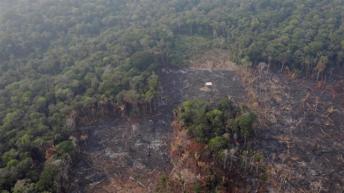Amazonia en llamas: el G7 moviliza 20 millones de dólares para combatir el fuego