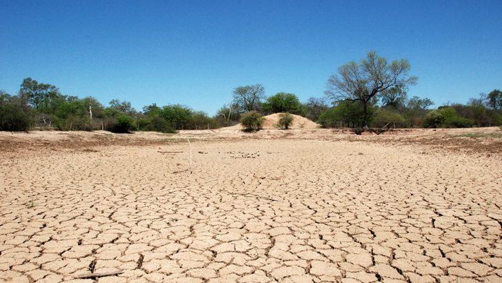 Poblaciones rurales del norte chaqueño sufren la sequía
