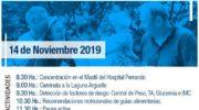 Día Mundial de la Diabetes: Salud conmemora con la comunidad