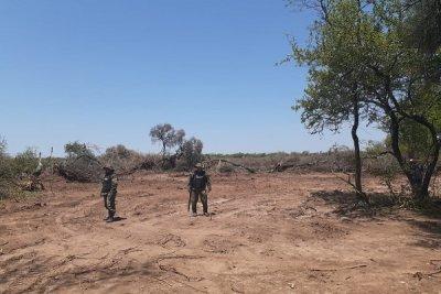 Los Frentones: combaten el desmonte ilegal