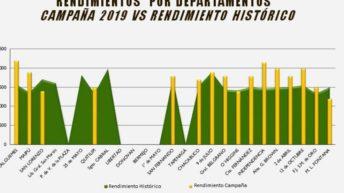 Trigo: Chaco cierra una buena campaña con rendimientos récords