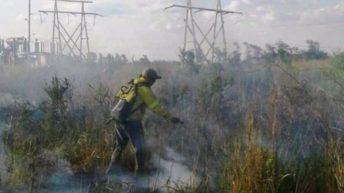 Secheep alerta sobre incendios que afectan la red de energía eléctrica