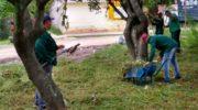Continúan con los operativos de limpieza y saneamiento para mejorar las condiciones de la ciudad