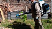 Ante diez casos confirmados y para prevenir el avance del dengue, Salud refuerza los operativos