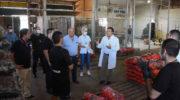 Protocolo por coronavirus: el Municipio inspeccionó y concientizó en el Mercado Frutihortícola