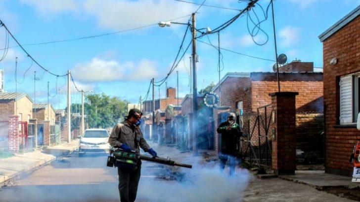 Dengue: instan a quedarse en casa y eliminar los criaderos de mosquitos