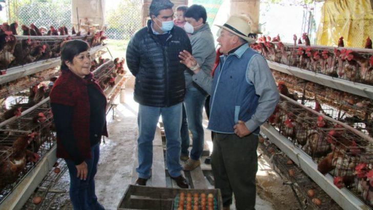 """Capitanich visitó Estancia Las Marías: """"es importante que podamos generar alimentos de buena calidad"""""""