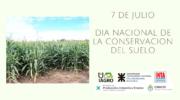 Día de la Conservación del Suelo: especialistas y productores se unen por el cuidado del recurso
