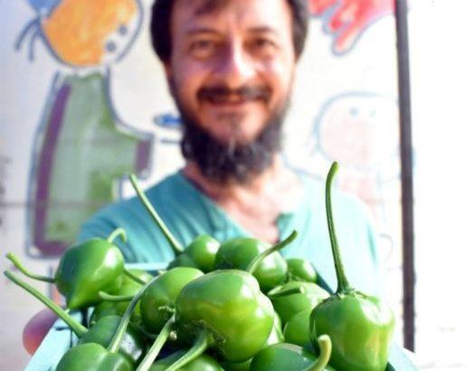 La Feria Cultiva ofrece su producción a través de la web