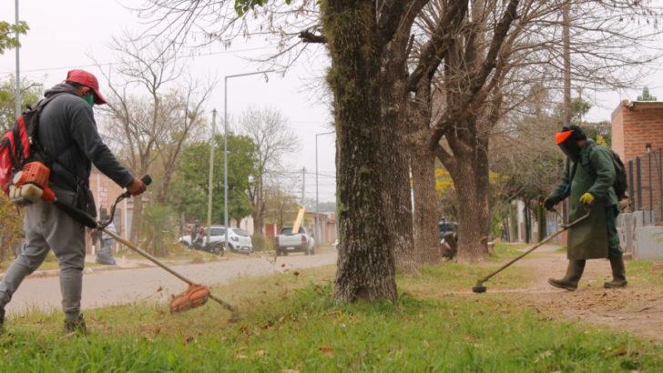 Realizan trabajos de desmalezamiento, descacharrado y erradicación de minibasurales en Villa Pegoraro