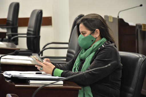 Paridad de género en la Defensoría del Pueblo del Chaco: la Diputada Cubells pide su aplicación