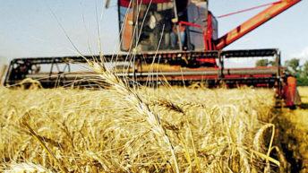 Aseguran que «la región está llamada a ser garante de la seguridad alimentaria del planeta»