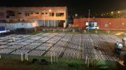 Prefectura secuestró 52.500 atados de cigarrillos