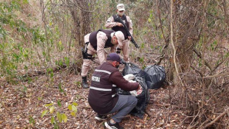 Prefectura secuestró casi 40 kilos de marihuana en Itatí