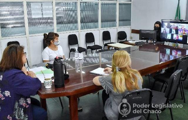 La comisión de Educación escuchó a autoridades del nivel superior de la provincia