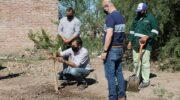 Resistencia: el Municipio plantó árboles en el parque de servicios municipal de la calle Ushuaia
