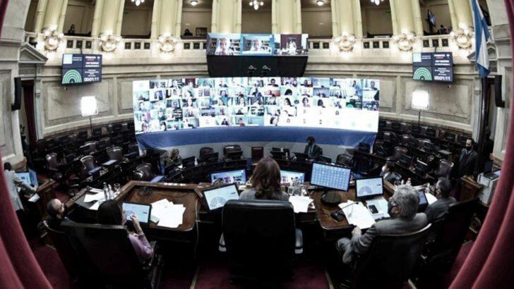 Aborto legal, seguro y gratuito: se abrió el debate en el Senado