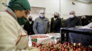 Baja de derechos de exportación de economías regionales: productores y pymes elogian la medida