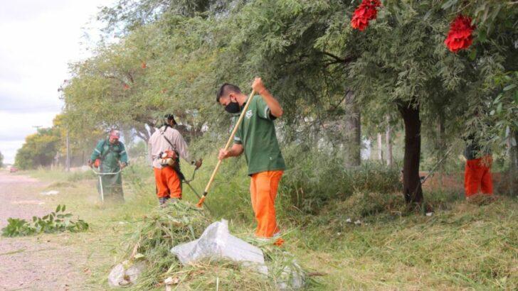 Resistencia: se ejecutó un operativo de saneamiento ambiental en el Barrio Jardín