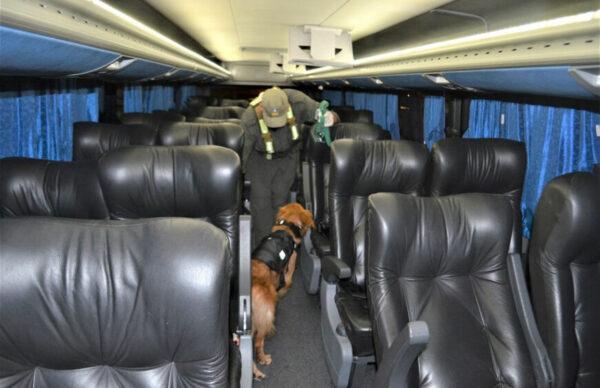 Santiago del Estero: Gendarmería secuestró más de 3 kilos de cocaína 3