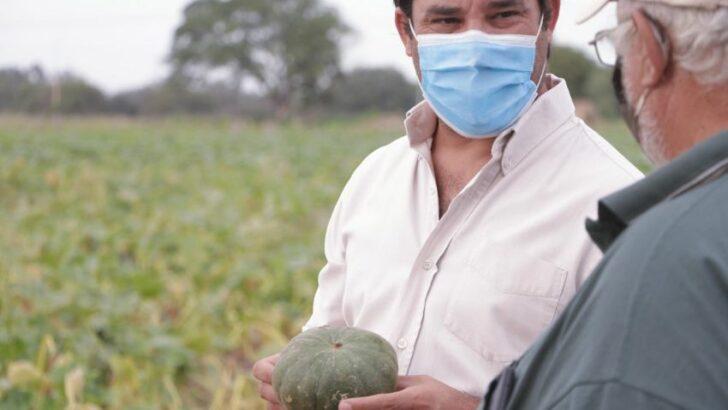 Alimentos chaqueños: entregaron insumos para frutohortícolas que incrementarán superficie de siembra