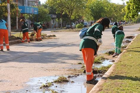 Avenida Alvear: a través del Plan Eco Ciudad, se realizó un operativo de desmalezado y limpieza general