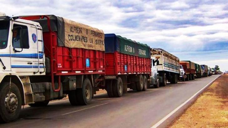 Transporte de cargas: ya está vigente el nuevo registro para conductores