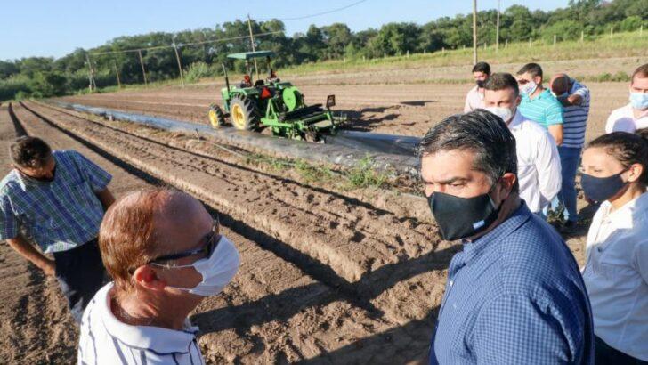 Gobierno y la empresa Danone ampliaron el acuerdo de comercialización con la producción de frutilla chaqueña