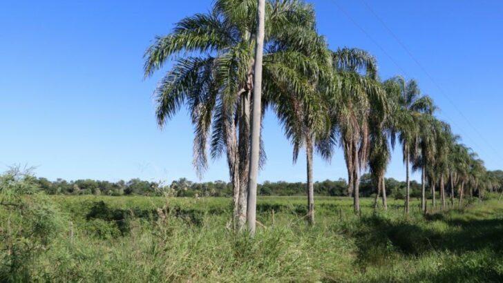 Trabajadores de Upcn y Colonización recibirán áreas naturales para el desarrollo de cámpines