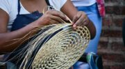 Cultura Solidaria destinará 52 millones de pesos en becas para trabajadores de la cultura