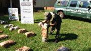 Misiones: secuestran más de 216 kilos de marihuana en el monte