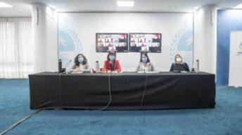 Chaco dijo presente en el encuentro del Consejo para la Prevención de Femicidios, Travesticidios y Transfemicidios